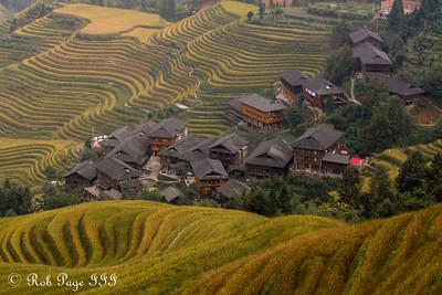 China & Vietnam