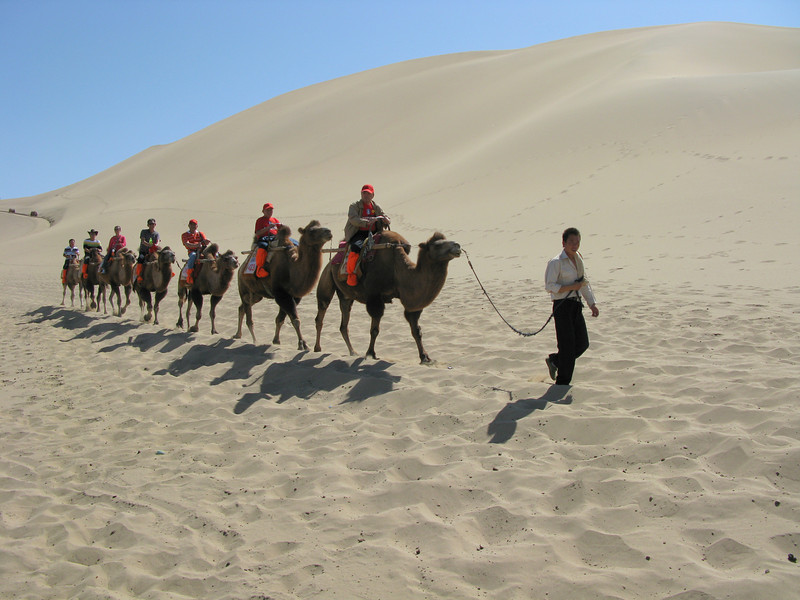 Camel Trail on the Dunes