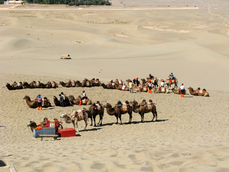 Camel rides on the Singing Sand Dunes of Dunhuang