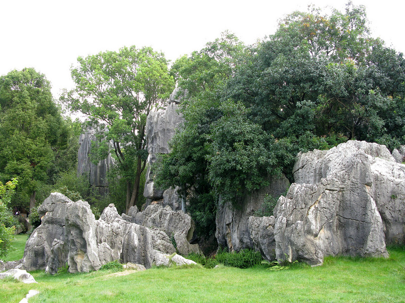 Stone Forest - Kunming