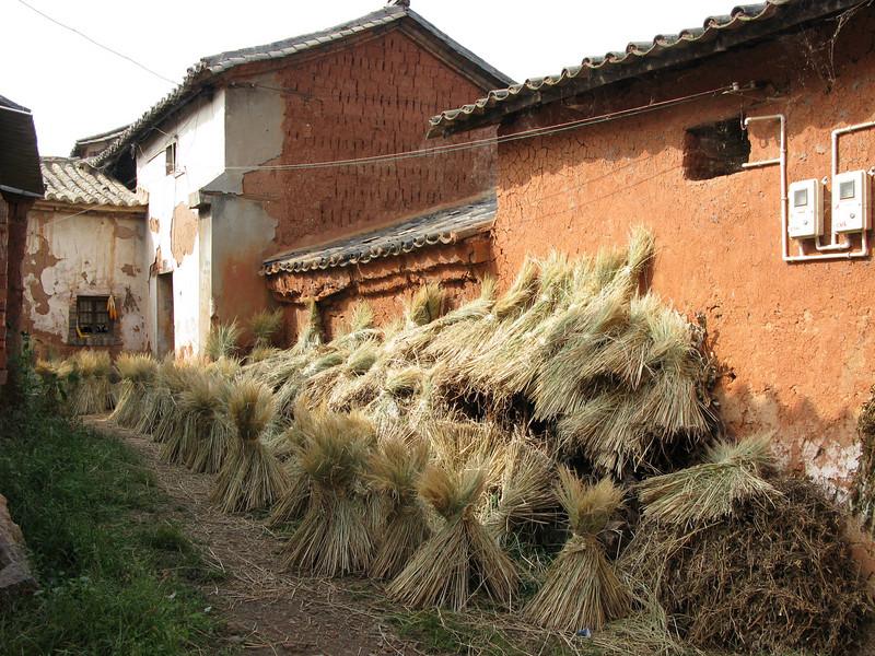 Sani Minority Village