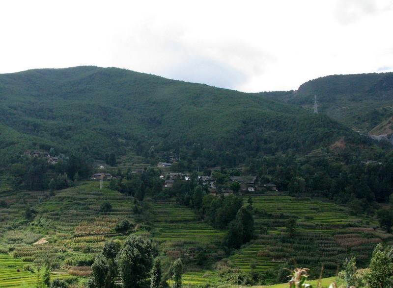 Terraced Farming outside Lijiang