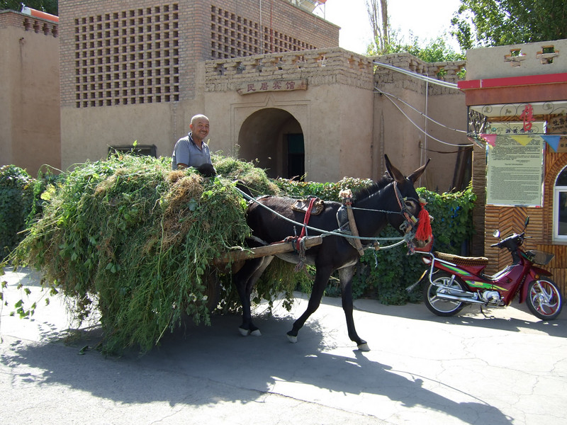 Transporting greens outside the Karez Wells