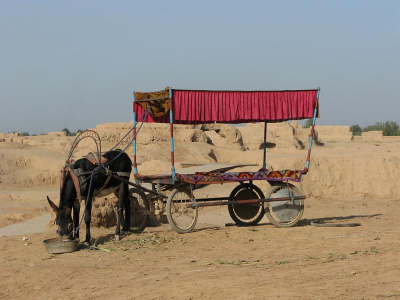Transportation inside the ruins of Gaochang