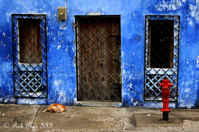 Protecting your fire hydrant is hard work - Cartagena, Colombia ... October 18, 2011 ... Photo by Rob Page III
