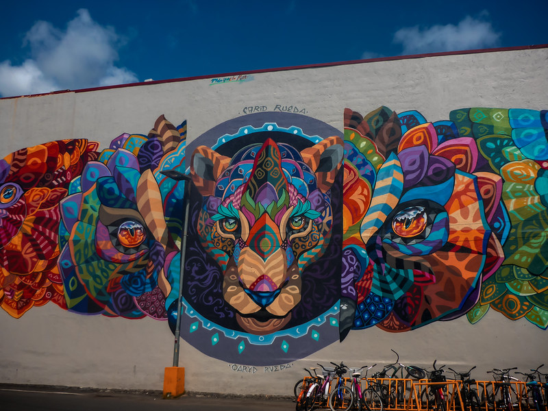Wall Mural Jaco CR