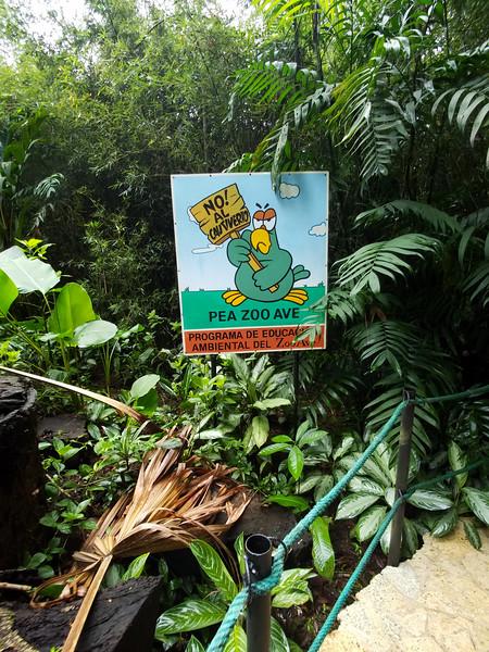 No al cautiverio!  At Zooave Animal Rescue Center in Costa Rica.