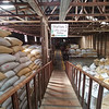 Coffee bagged for storage at the Doka Coffee Plantation.