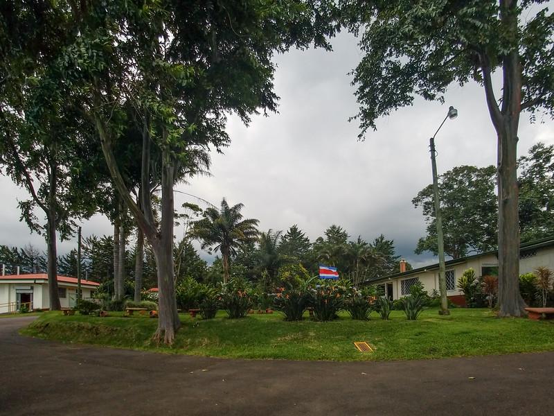 On the Doka coffee plantation's grounds.