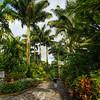 Inside the Baldi Hot Springs Park in Costa Rica.