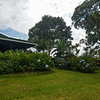 Grounds of Doka, a Costa Rican Coffee Plantation.