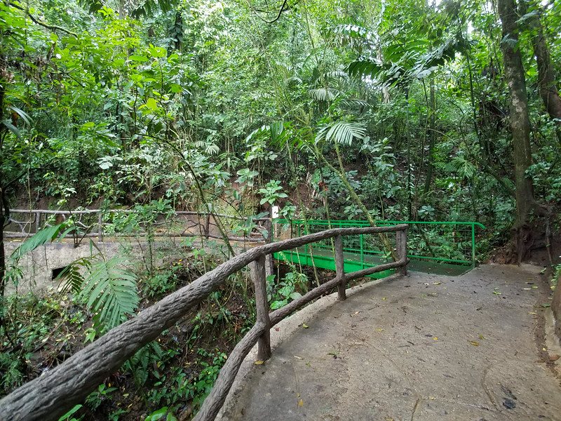 Initial bridge on the trail at the Hanging Bridges Park, Costa Rica.