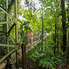 Tourists navigating a hanging bridge along the trail in Hanging Bridge Park, Costa Rica.