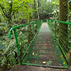 Another bridge crossing along the trail in Hanging Bridges Park in Costa Rica.