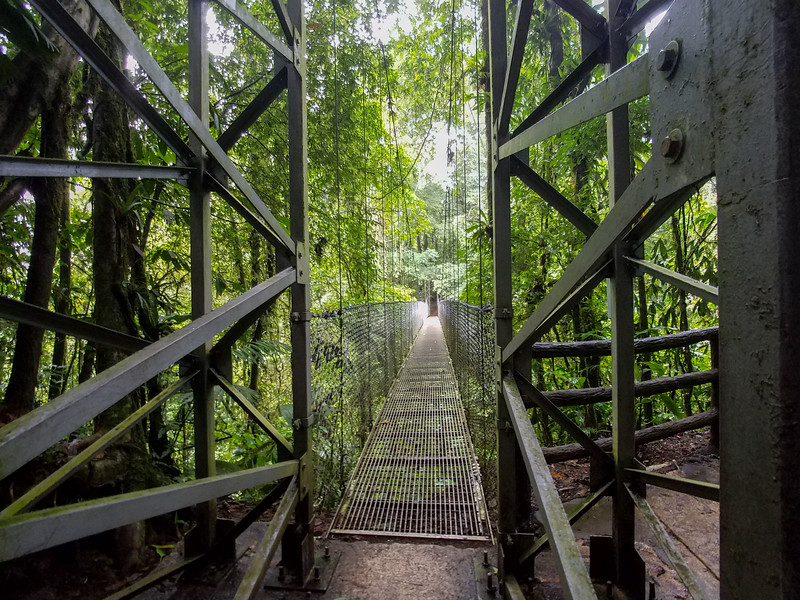 A long hanging wire suspension bridge in Hanging Bridges Park, Costa Rica.