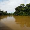 The Rio Frio River in the Cano Negro wildlife refuge.