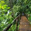 A wooden bridge on the way to the waterfall at Manuel Antonio National Park in Costa Rica.