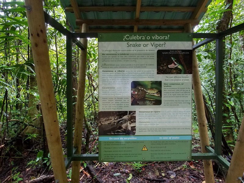 The differences between a Snakes and a Viper explained trail side in  Manuel Antonio National Park, Costa Rica.