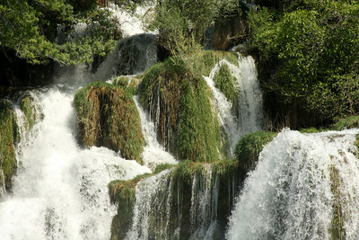The river literally flows amongst the trees - Krka N.P., Croatia ... May 8, 2008 ... Photo by Rob Page III