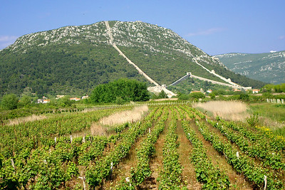 The vineyards that spread out below the ancient town of Ston - Ston, Croatia ... May 2, 2008 ... Photo by Emily Page
