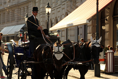 One of the horsedrawn carriages as it comes into Michaelerplatz - Vienna, Austria ... May 9, 2008 ... Photo by Rob Page III