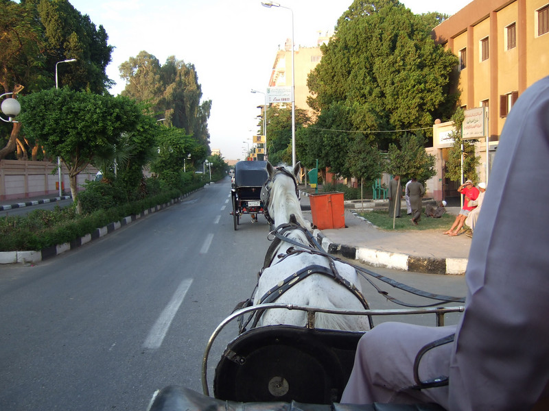 Horse Carriage ride to Luxor Temple