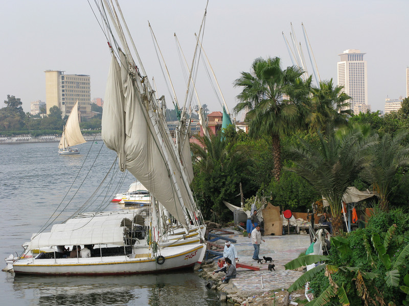 Along the Banks of the Nile RIver near the Semiramis Intercontinental Cairo