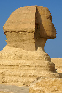 The Sphinx.  It is carved out the bedrock, but unfortunately it is slowly decaying - Giza, Egypt ... November 20, 2006 ... Photo by Rob Page III