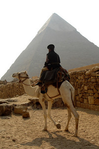 One of the guards riding along the access road with the Pyramid of Khafre rising in the background - Giza, Egypt ... November 20, 2006 ... Photo by Rob Page III