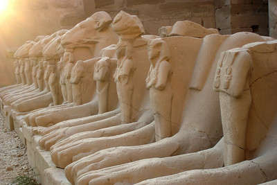 The line of sphinxes that guard the east-west axis of Karnak - Luxor, Egypt ... November 24, 2006 ... Photo by Emily Conger
