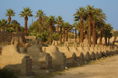 The avenue of sphinxes that once led from the Luxor Temple to al-Karnak - Luxor, Egypt ... November 24, 2006 ... Photo by Rob Page III