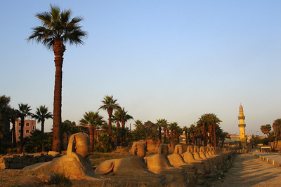 Looking down the Avenue of Sphinxes - Luxor, Egypt ... November 24, 2006 ... Photo by Rob Page III