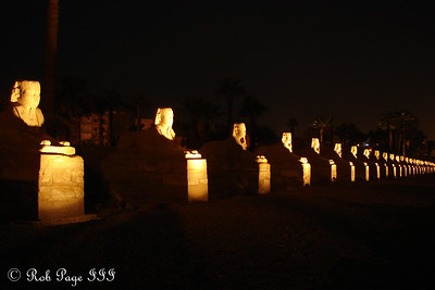 The row of sphinxes all lit up - Luxor, Egypt ... November 24, 2006 ... Photo by Emily Conger