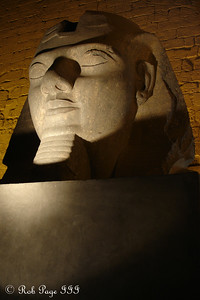 Ramesses - Luxor, Egypt ... November 24, 2006 ... Photo by Rob Page III