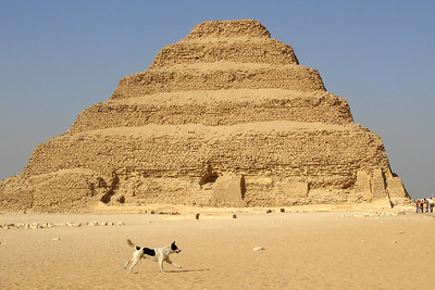 The stepped Pyramid of Zoser with a dog in front - Saqqara, Egypt ... November 28, 2006 ... Photo by Rob Page III