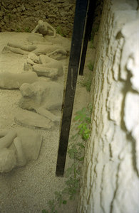 Garden of Fuitives. Plaster casts of souls unfortunately cought in the ash - Pompeii, Italy ... July 14, 2001 ... Photo by Rob Page III