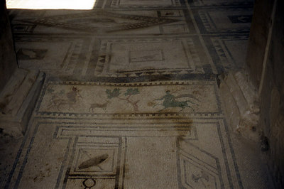 The elaborate design on the floor of one of the buildings - Pompeii, Italy ... July 14, 2001 ... Photo by Rob Page III