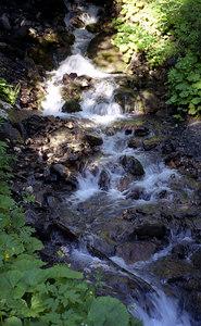 A mountain stream near Murren, Switzerland. ... July 4, 2001 ... Photo by Rob Page III