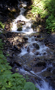 A mountain stream near Murren, Switzerland. ... July 4, 2001 ... Photo by Rob Page III