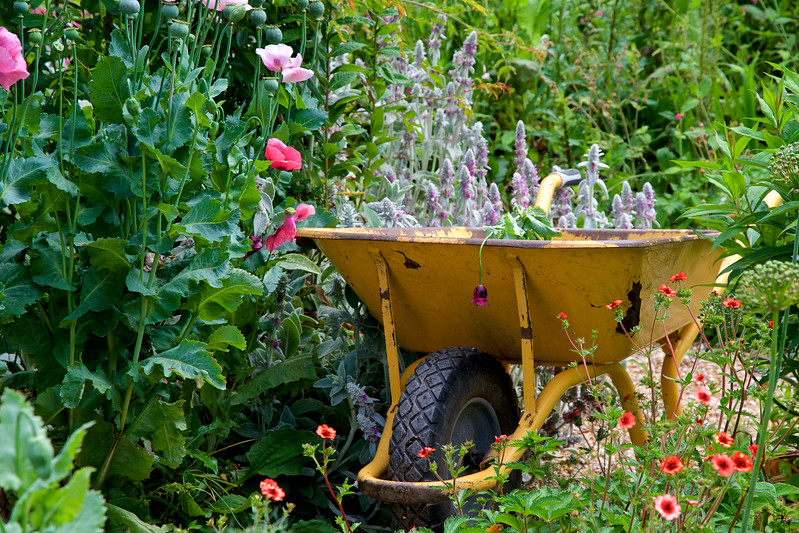 Claude Monet's Giverny Gardens