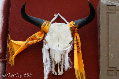 A Tibetan Yak skull - Lhasa, Tibet, China ... May 20, 2014 ... Photo by Rob Page III