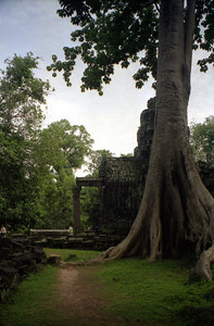 Banteay Kdei. ... August 15, 2004 ... Copyright Robert Page III
