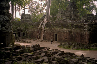 Ta Prohm.  Archeaologists have left this temples like it was when the European explorers discovered Angkor Wat.  The trees grow through and out of the ruins while dwarfing the people around them. ... August 15, 2004 ... Copyright Robert Page III