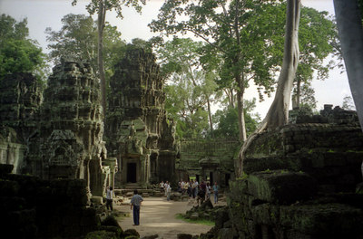 Ta Prohm.  Archeaologists have left this temples like it was when the European explorers discovered Angkor Wat.  The trees grow through and out of the ruins. ... August 15, 2004 ... Copyright Robert Page III
