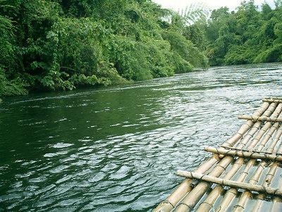 Bamboo Rafting near Kanchanaburi, Thailand. ... August 19, 2004 ... Copyright Robert Page III