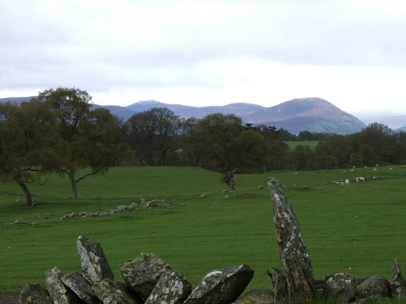 Sheep Farm in the Highlands
