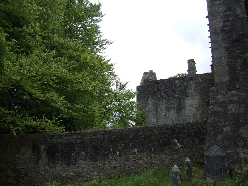 Abbey Grounds and Ruins