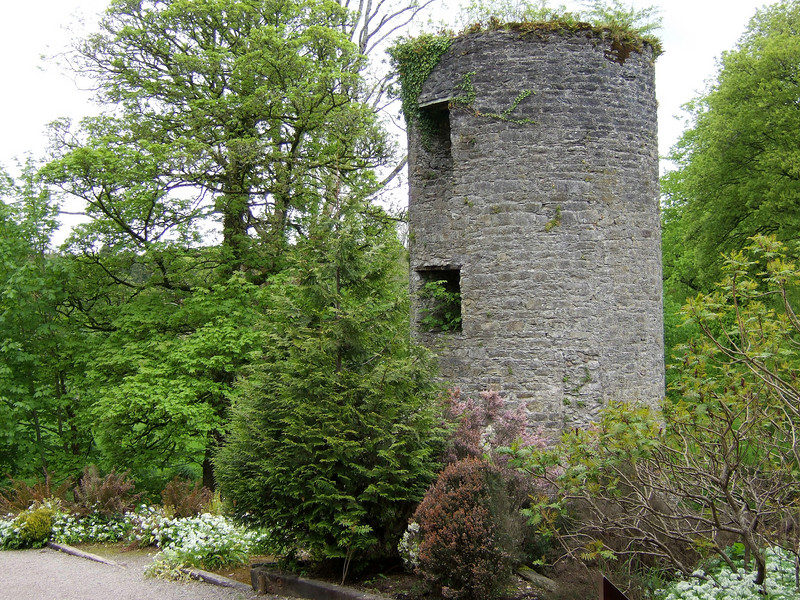 Tower Ruins at Blarney Castle