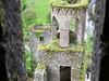 Blarney Castle Ruins