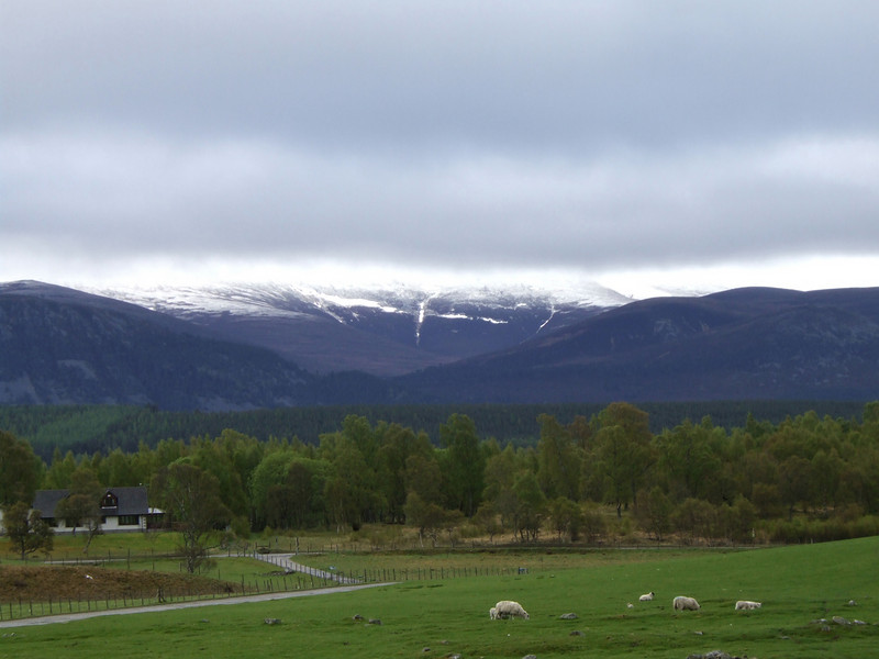 Snow Peaks in the Highlands